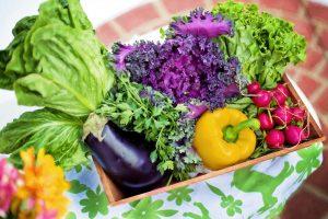 dieta legume